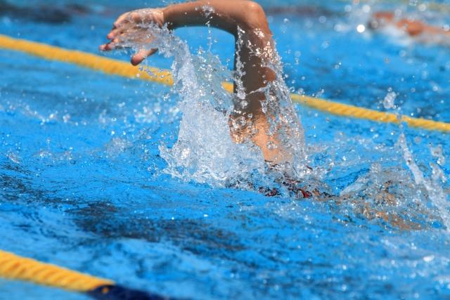 世界 水泳 スケジュール